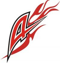 Автономная некоммерческая организация дополнительного образования и спорта «Спортивно-технический клуб «Адреналин»