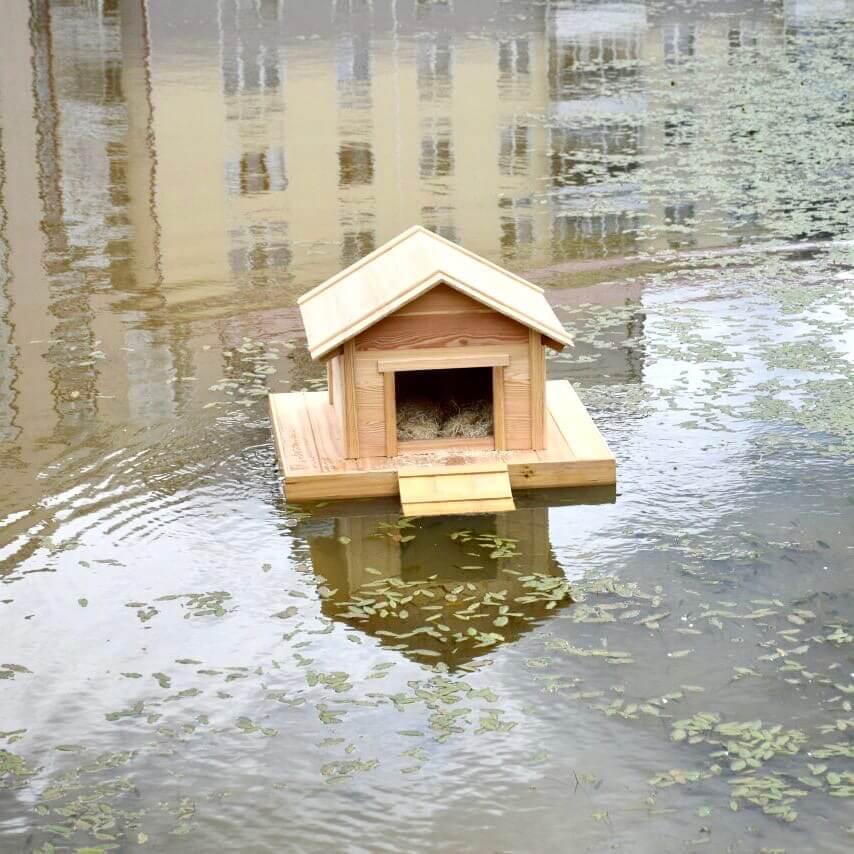 Плавучий домик для уток появился на городском пруду Югорска